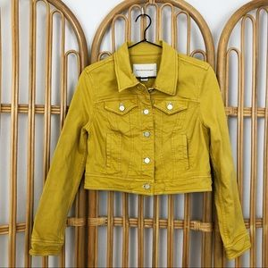 Anthro Pilcro and the Letterpress Mustard Jacket